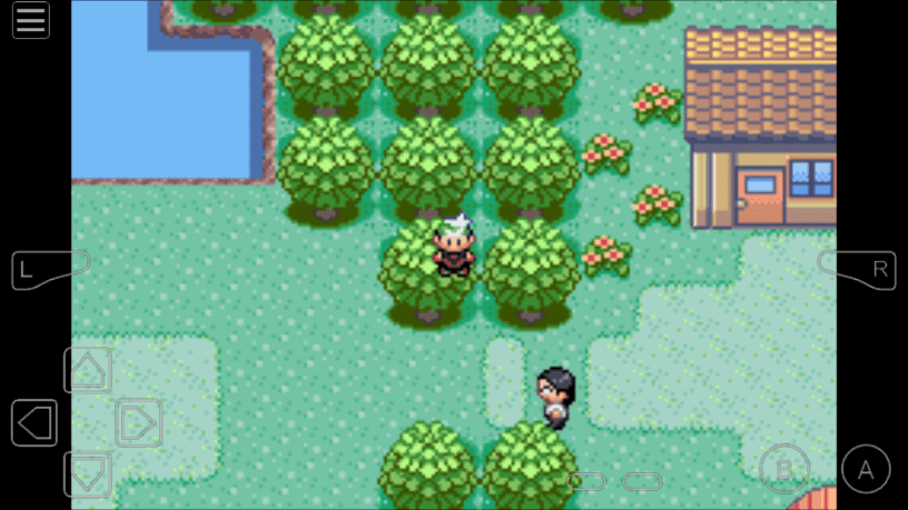 Walk Through Walls cheat for Pokemon Theta Emerald
